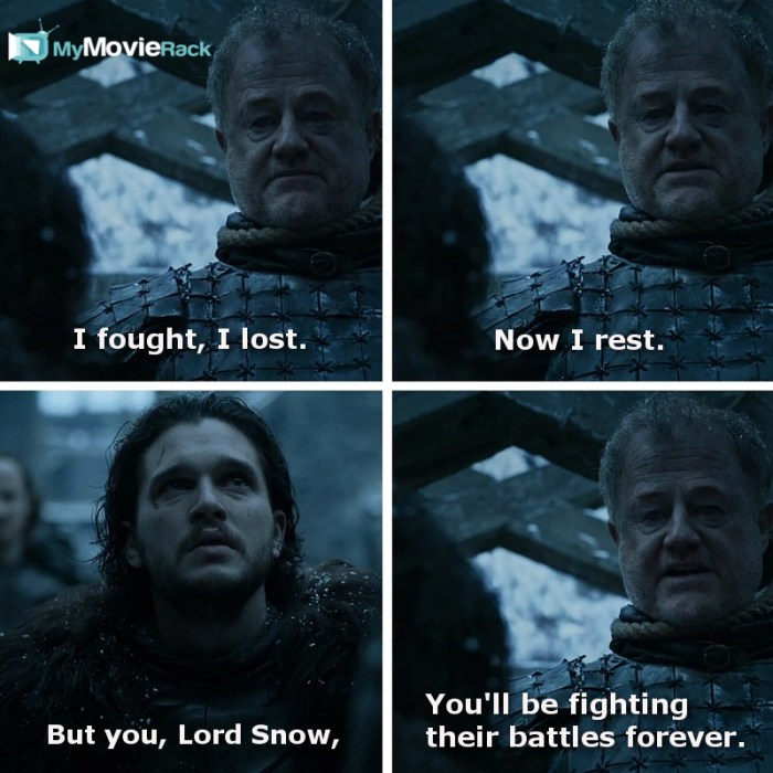 i fought i lost now i rest but you lord snow